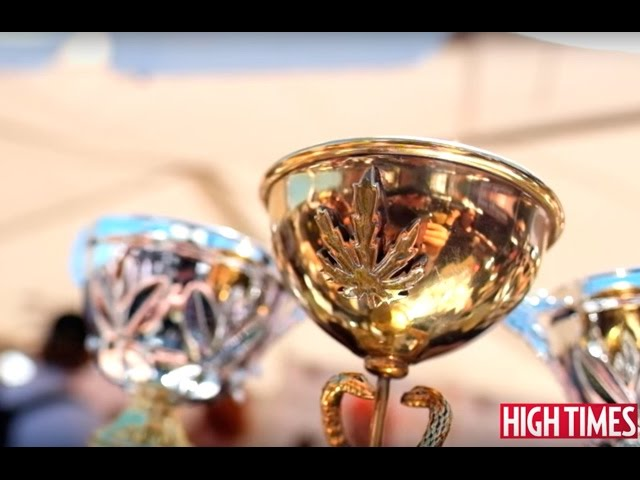 2016 NorCal Medical Cannabis Cup: Highlights