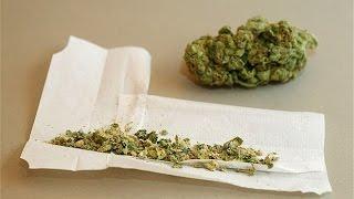 Legalisierung von Cannabis Weed Gras in Deutschland - Dokumentation 2016