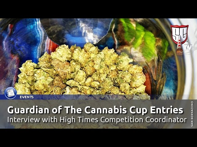 Guardian of The Cannabis Cup Entries - High Times Competition Coordinator - Smokers Guide TV USA
