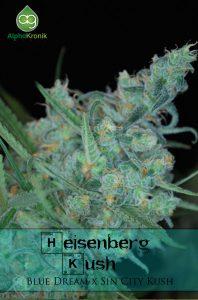 Heisenberg-regular