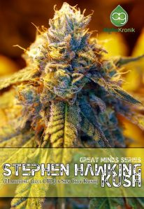 Stephen Hawking Kush regulaer