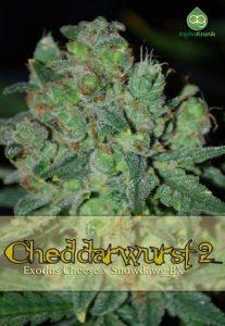 chedda-rwurst-2-regular