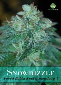 snowdizzle-regular-Alphakronik