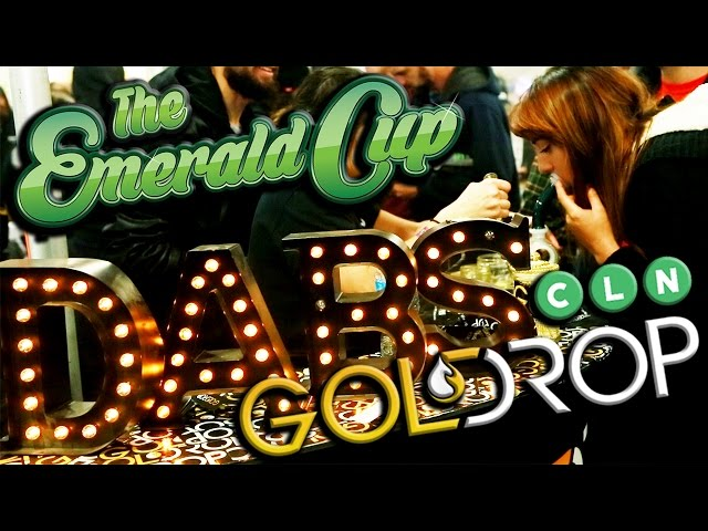 Craig Ex at Emerald Cup 2016 Interviews First Place Winners Gold Drop