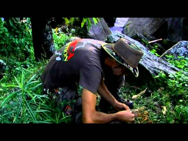 Strain Hunters Malawi Expedition