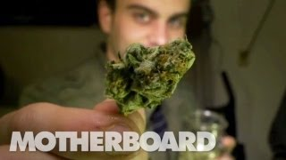 The Future of Weed: HIGH COUNTRY (EN)