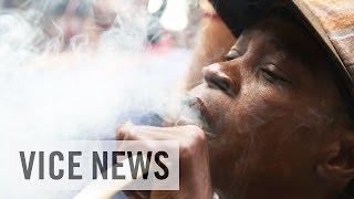Jamaican Bud Business (EN)