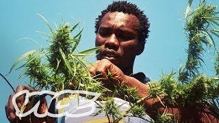 Swaziland: Gold Mine of Marijuana (Part 2/2) (EN)