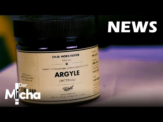 DerMicha - Folge 2 - Cannabis News: neue Grassorten in deutschen Apotheken