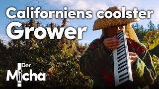 Californiens coolster Grower | DerMicha #14