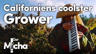 Californiens coolster Grower | DerMicha #14