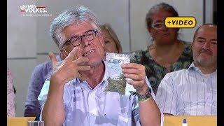 Cannabs legalisieren –