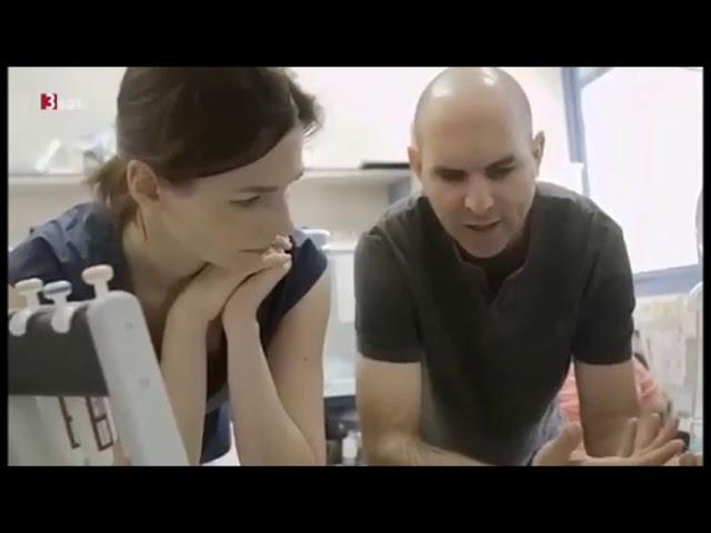 Cannabis Forschung gegen Krebs | 3sat